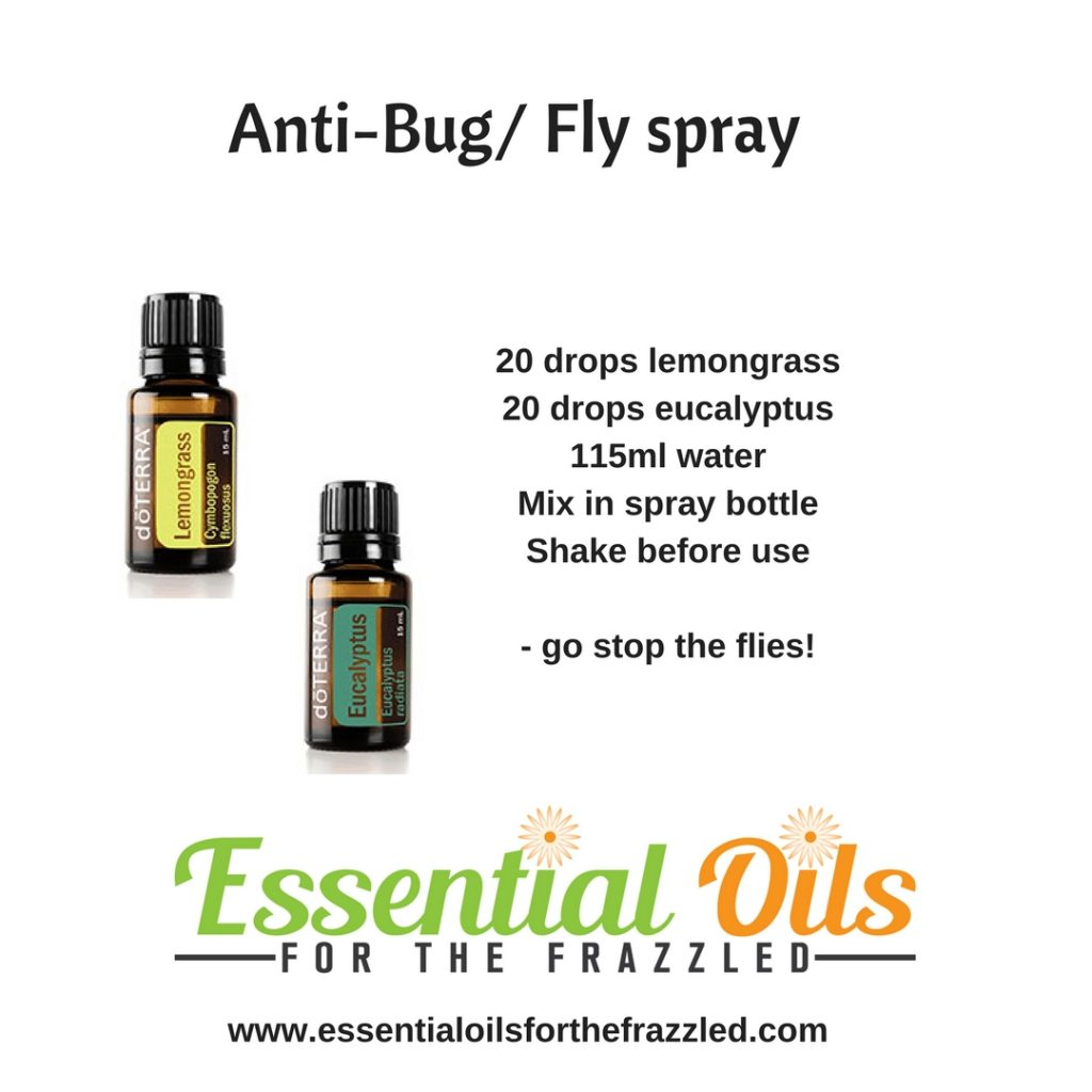 Flies and Bugs Bothering You? A Few Essential Oil Solutions
